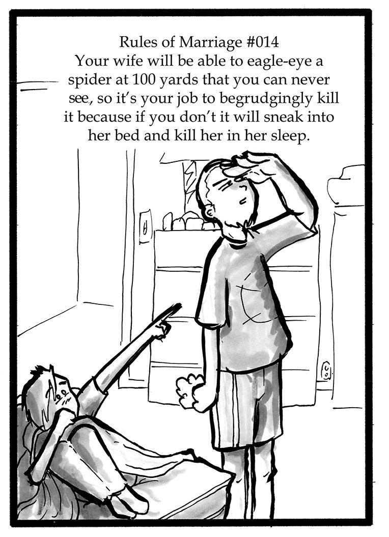 104 – Hidden Spiders
